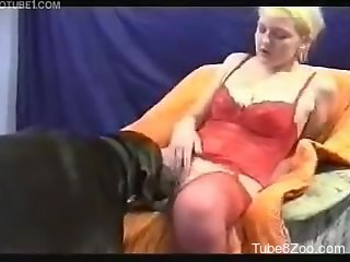 Black doggy and sexy hottie in filthy amateur bestiality