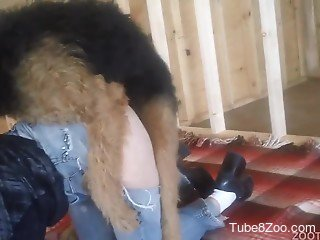 Dog tears off owner's jeans and starts banging her